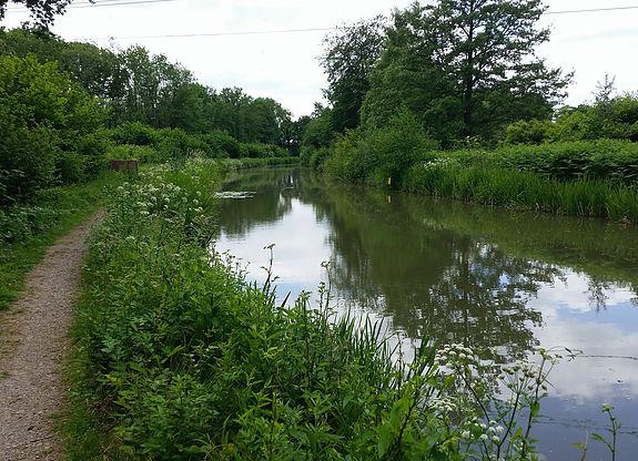 Basingstoke Canal Angling Association
