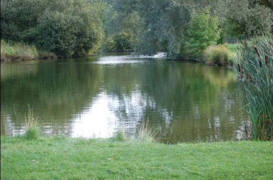 Adwell Estate Fishing