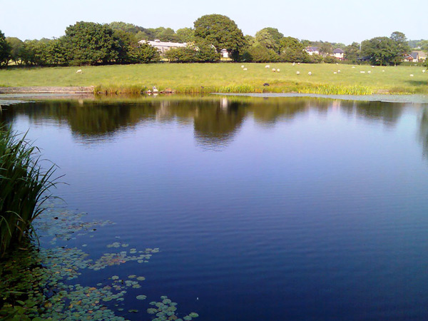Withnell Angling Club