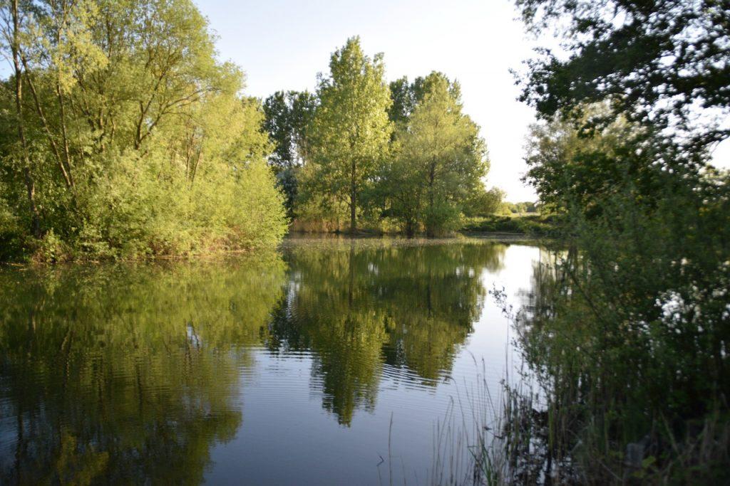 Letchworth Garden City Angling Association