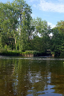 Wimborne and District Angling Club