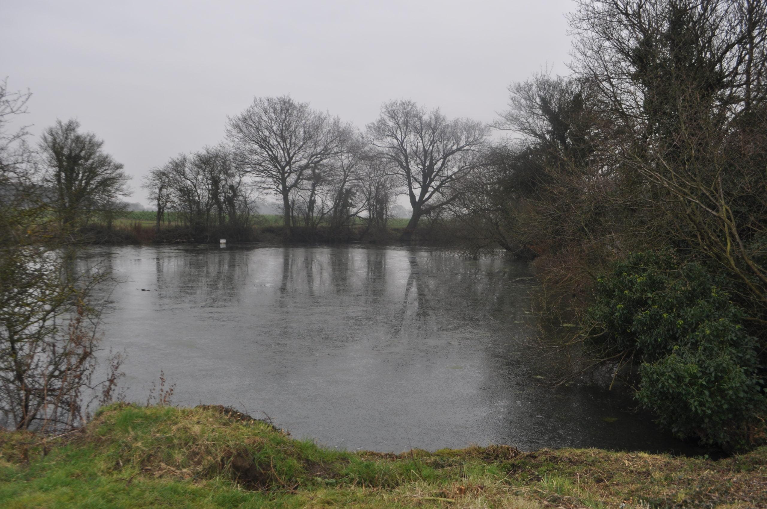 Shemmings Pond